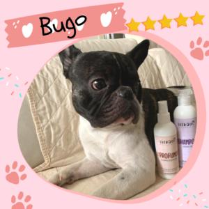 shampoo dermo bio cane vickaus recensione 2