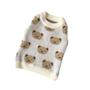 maglione cane orsetto foto prodotto